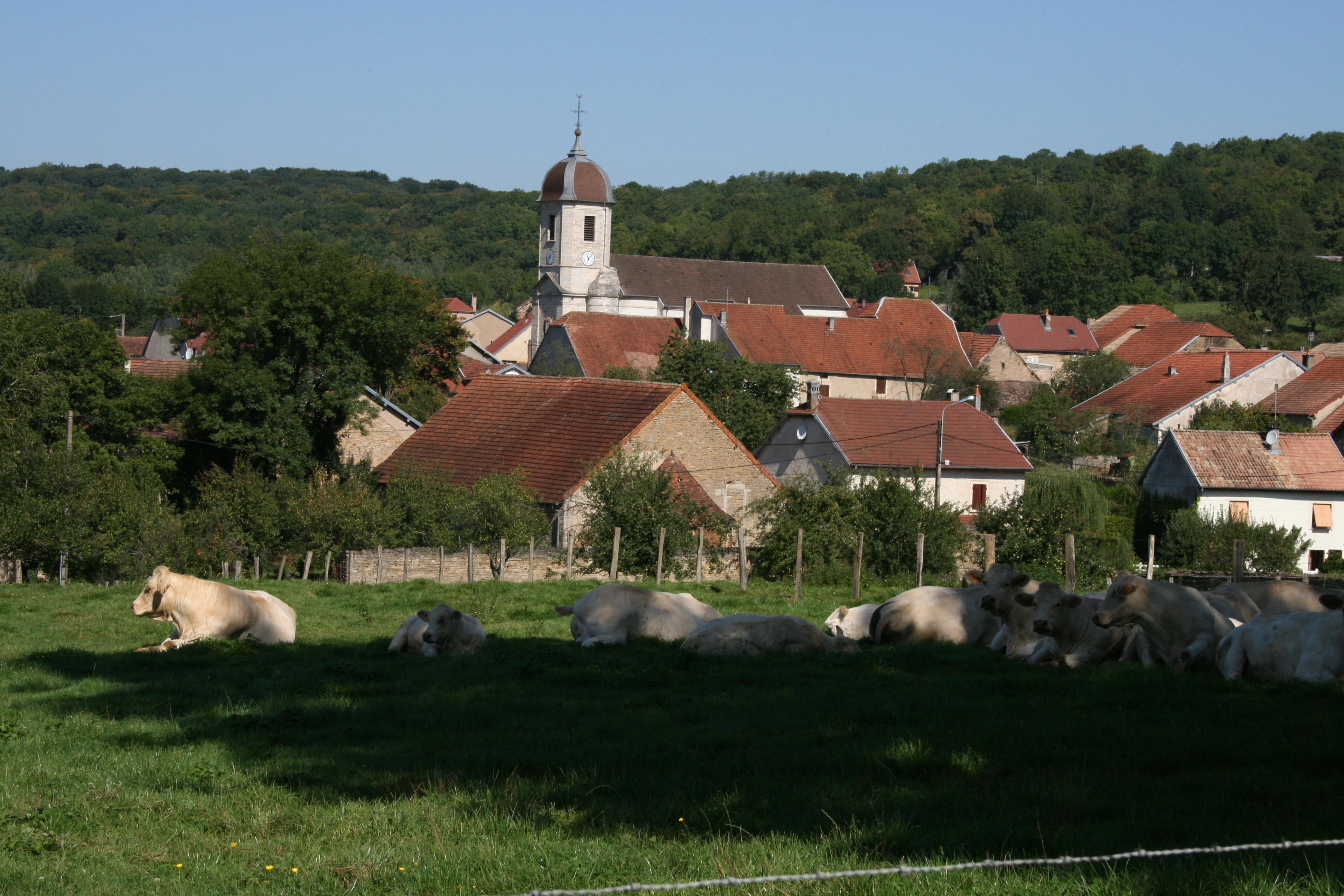 Site de rencontre milieu rural