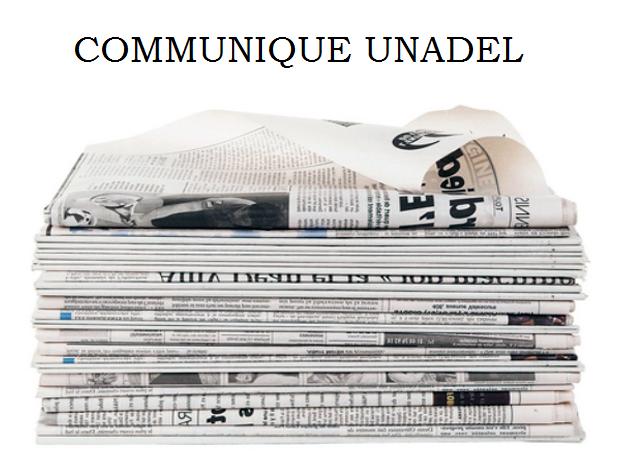 Aboutissement ou fin de la décentralisation ? Quelques jours après avoir pris connaissance du nouveau projet de loi de décentralisation, l'Unadel publie un communiqué.
