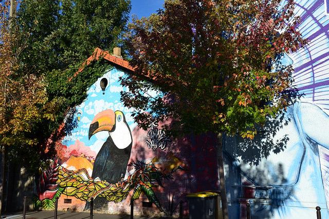 Toucan-maison-banlieue-CC-jeannemenj
